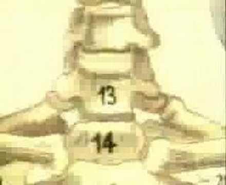 Jean Michael Jarre - Chronologie IV