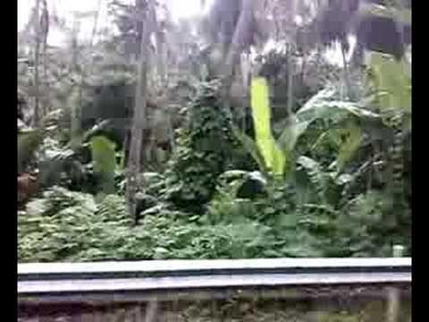 South Luzon Travel