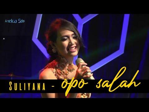 Download Suliyana – Opo Salah Mp3 (4.1 MB)