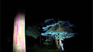 Ludovico Einaudi - Discovery At Night (Lippok Remix)