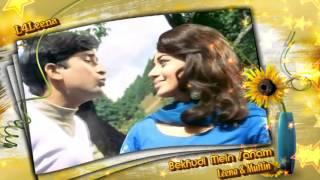 Bekhudi Mein Sanam...Leena & Muftin