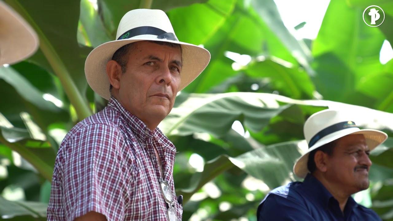 Download Día de campo Ecuafoxsa S.A. (El Productor TV - El periódico del campo)