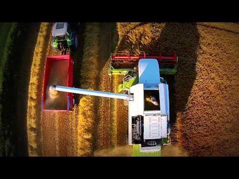 Harvest in Scotland 2014