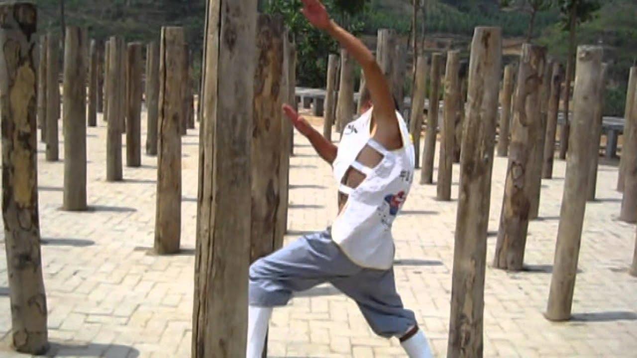 Real Power Shaolin kung fu