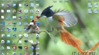 видео Как восстановить битые пиксели и убрать белые полосы и пятна с экрана монитора
