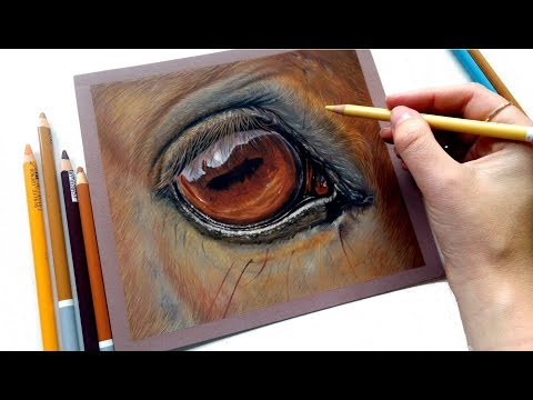 let's-draw-a-realistic-horse-eye-|-pastel-pencils