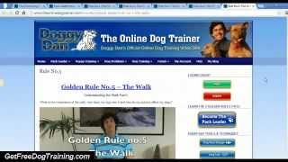 Best Reviews Of The Online Dog Trainer - Doggy Dans 5 Golden Rules