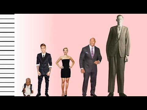 How Tall Is Justin Bieber? - Celebrity Height Comparison!
