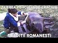 Taierea si Transarea Porcului de Craciun - Traditii Romanesti de Ignat [Eng Sub]