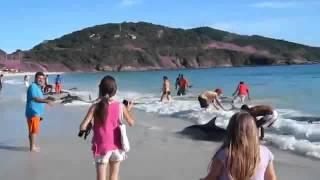 Он просто снимал море и пляж, как вдруг(, 2014-07-11T13:11:53.000Z)