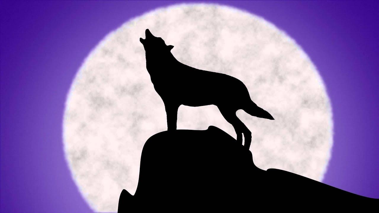 Uu >> Animations Teaser - heulender Wolf - YouTube