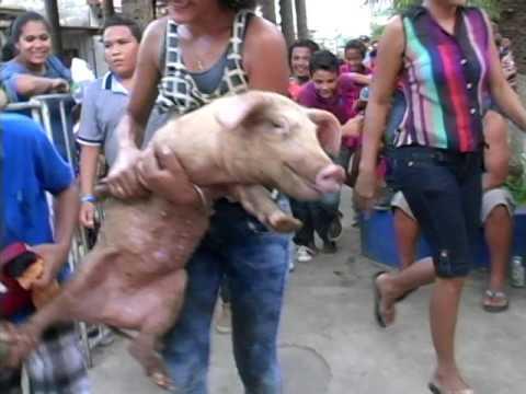 Chacuatol de Gente 'San Juan #2 2017' - Camara Matizona