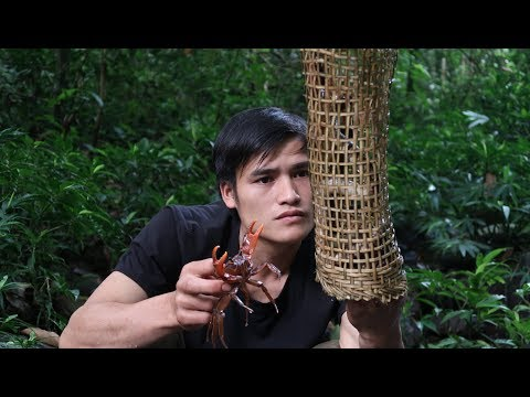 Survival in the tropical rainforest, ep 27, food in the streams