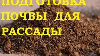 Подготовка почвы для рассады.