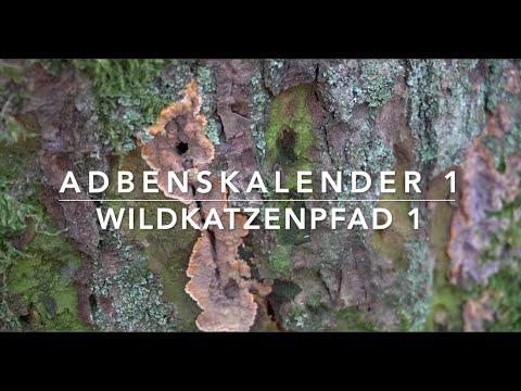 AdBensKalender 2020 - Türchen 1