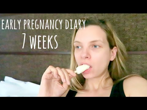 Early Pregnancy Diary: 7 Weeks