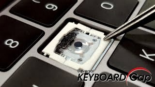 How to solve the issue of macbook pro Butterfly mechanism keyboard?
