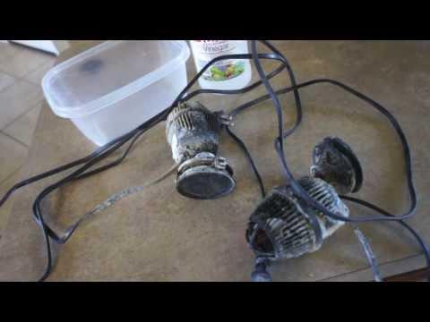 Secret to Cleaning Aquarium Equipment