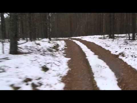 По лесу на велосипеде зимой. Семеновский район нижегородской области.