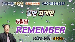 개미아빠 배 현철  10월  19일  대응
