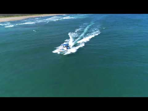 Drone footage of the research boat observing the annual blacktip shark migration