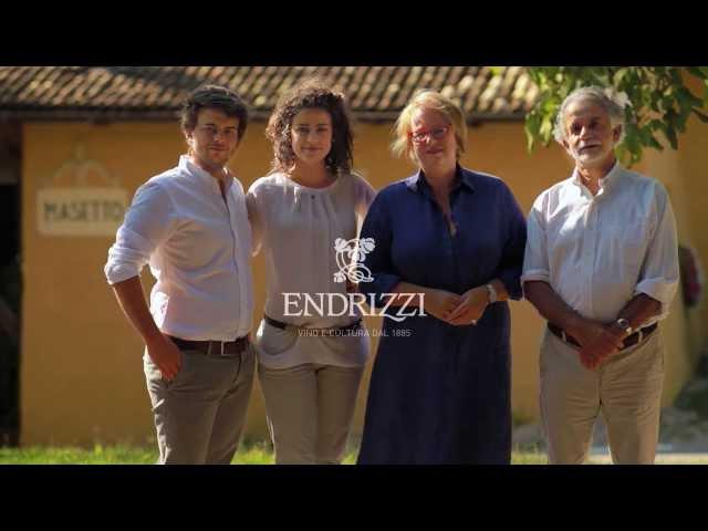 Cantina Endrizzi - ilmangiaweb