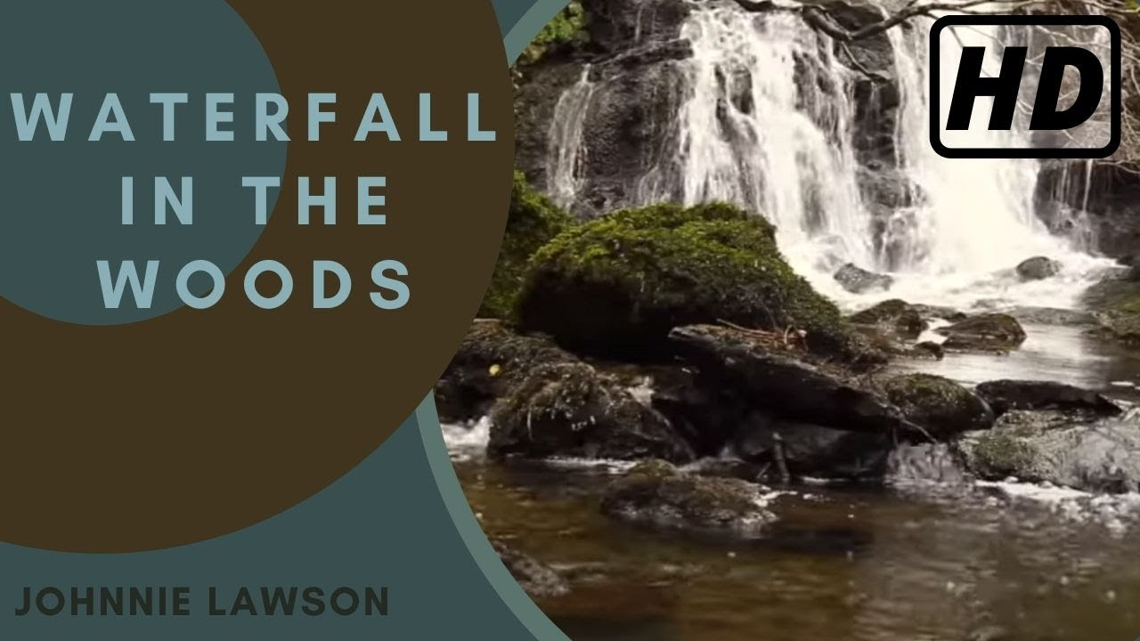 Forest Waterfall Nature Sounds Birds Singing Natural