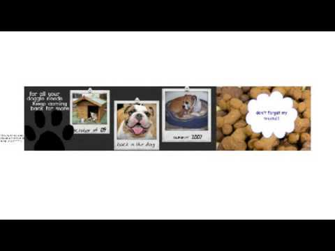 Dog Training - The Top 10 Sites