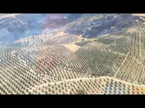 Hatay Belen kırsalında Zeytinlik alan yandı