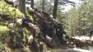 Албания велопоход, часть 2(2)(, 2011-10-10T21:45:29.000Z)