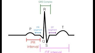 EKG/ECG Interpretation (Basic) : Easy and Simple!