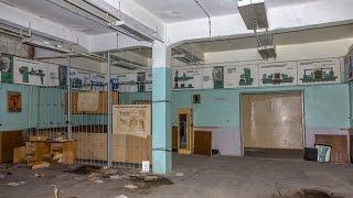 Все ужасы современного образования в России