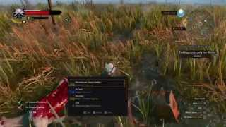The Witcher 3: Wild Hunt location find sword level 10 and diagram CHORT LURE
