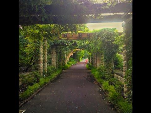 The Royal Botanic Garden   Sydney, Australia