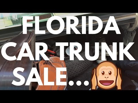 Buying Stuff From A Car Trunk 🚗... Making Money On eBay Vlog | Reselling RALLI ROOTS