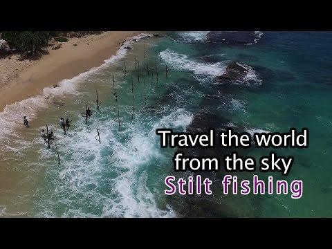 Drone Camera, Trip To The World - Stilt Fishing In SriLanka/스리랑카 여행-스틸트 낚시