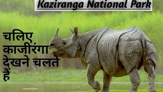 kaziranga national park project || Assam || World Heritage site
