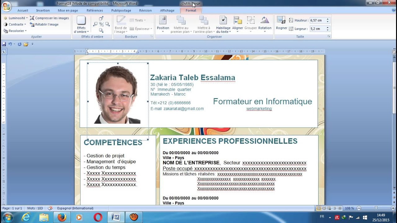 comment rediger experiences professionnel cv