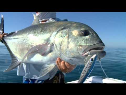 Extreme offshore fishing for GT: Giant Trevally fishing Mozambique