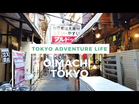 Walking Around Tokyo