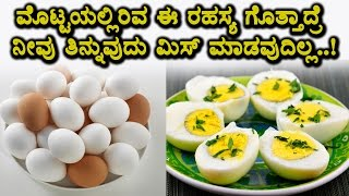 Shocking news about Egg | Must Watch Video | Top Kannada Health Tips |