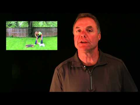 Pet Training Program - How to teach your dog the climb command.