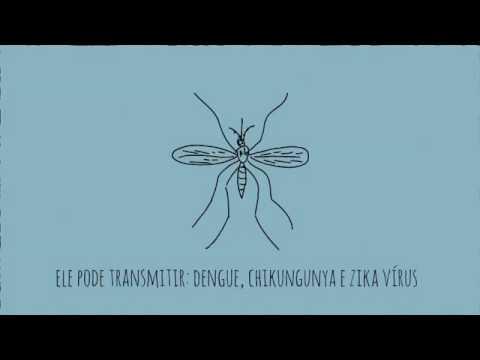 Todos contra a dengue. FAÇA SUA ...