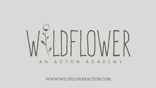 Wildflower An Acton Academy