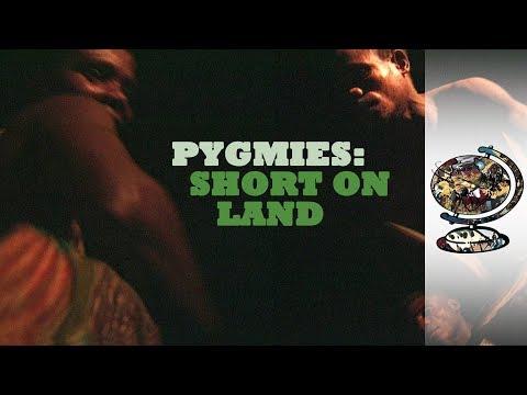 PYGMIES: SHORT ON LAND [1999] - Cameroon
