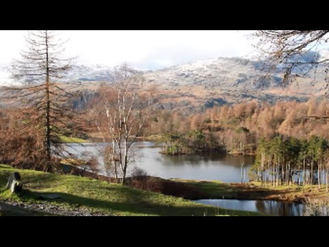 Lake District Walks Tarn Hows