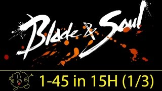 [Blade and Soul] Guide: Level 1 to 45 in 15 Hours (Part 1/3)