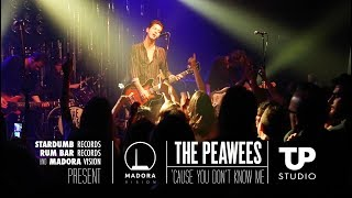 The Peawees - Cause You Don't Know Me  [Live]