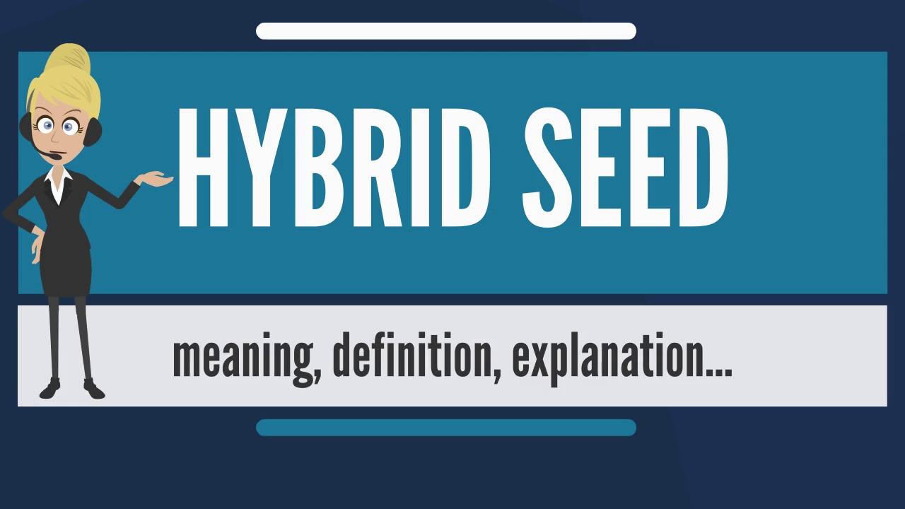What Does Hybrid Seed Mean Meaning Definition Explanation The Audiopedia