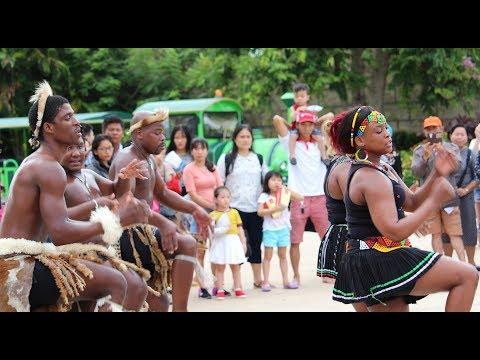 Energetic traditional Zulu dancing